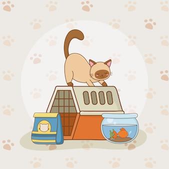 Mascotes de aquário bonito pequeno gatinho e peixe