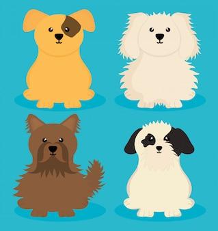 Mascotes de cachorrinhos fofos