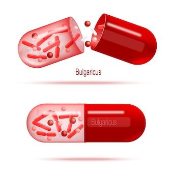 Medicamentos com vetor realista de bactérias probióticas
