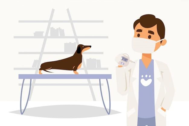 Médico de caráter médico, veterinário, medir a temperatura do cão, animal de estimação, isolado no branco, ilustração plana.