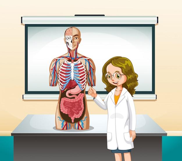 Médico e modelo humano em sala de aula