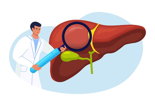 Médico examinando o fígado do paciente com lupa. pesquisa médica. médico diagnóstico, doença hepática, hepatite a, b, c, d, cirrose, câncer