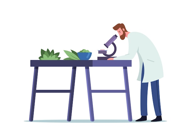Médico farmacêutico masculino em propriedades de pesquisa de robe médico de plantas naturais por microscópio em laboratório para fabricação de indústria de produção de medicamentos para homeopatia, farmácia. ilustração em vetor de desenho animado