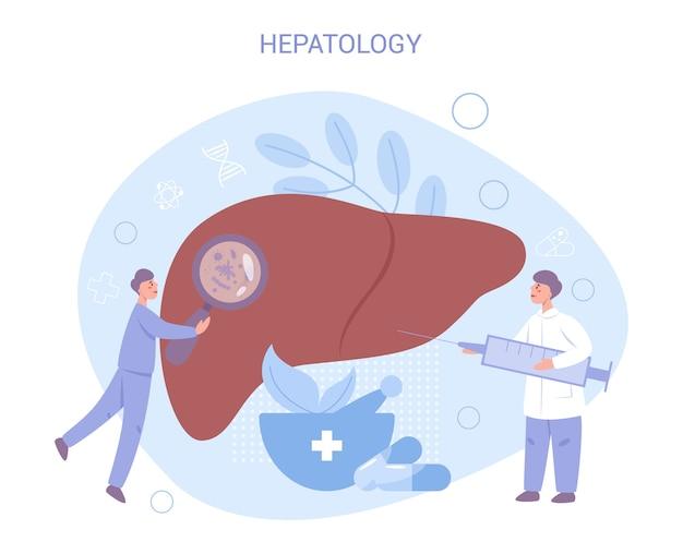 Médico faz o conceito de exame de fígado. ideia de saúde corporal