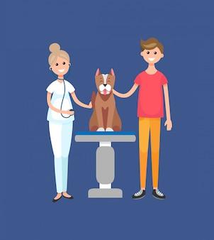 Médico veterinário na clínica veterinária com paciente