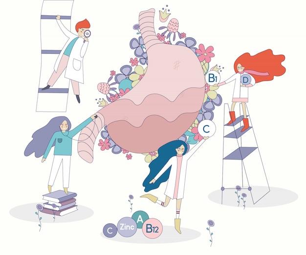 Médicos e estômago saudáveis