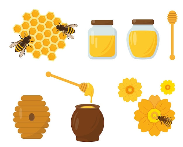 Mel e apicultura conjunto isolado no fundo branco.