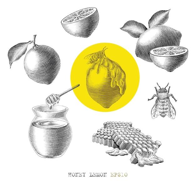 Mel, limão, elememt, desenhado à mão, vindima, gravura, estilo, preto e branco, clip-art, isolado, branco