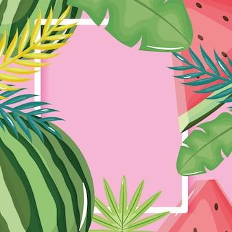 Melancia fresca e folhas palmas moldura quadrada
