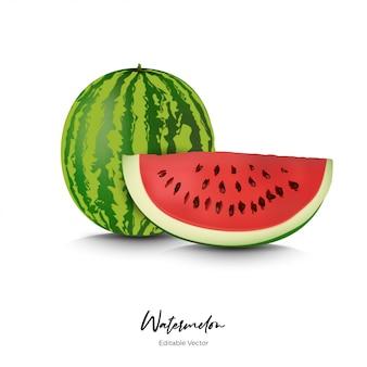 Melancia frutas realista