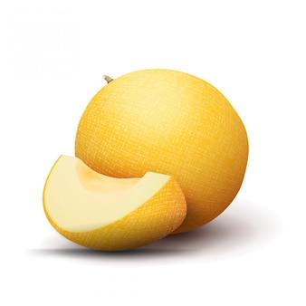 Melão amarelo maduro com um pedaço de melão isolado em um fundo branco para a sua criatividade. melão realista vector