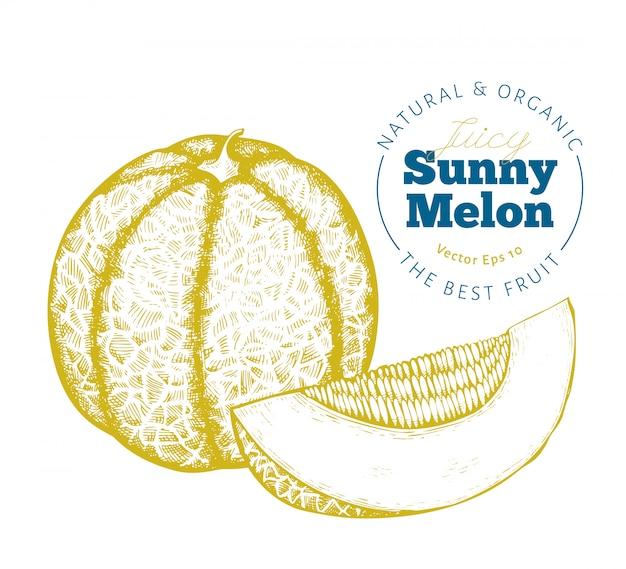 Melão inteiro e um pedaço de melão.