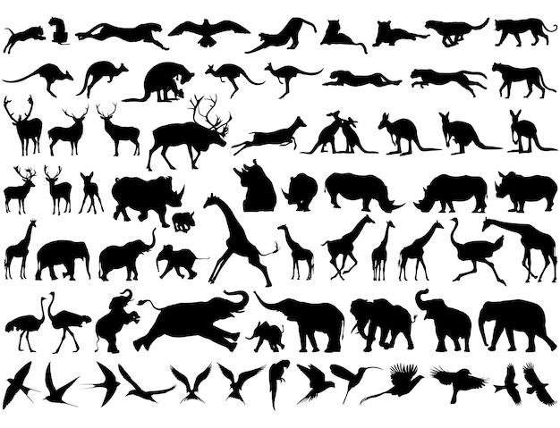 Melhor coleção de silhuetas de animais