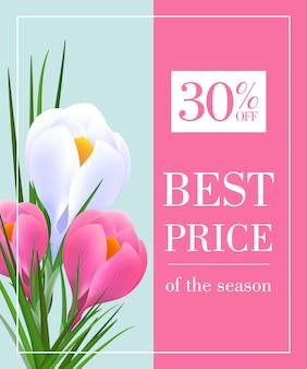 Melhor preço da temporada trinta por cento fora cartaz com snowdrops em fundo rosa e azul