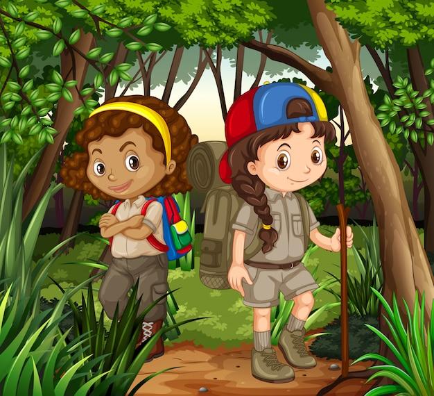 Meninas, hiking fora, em, a, madeiras