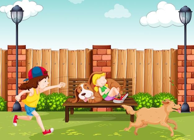 Meninas, tocando, com, cachorros, parque