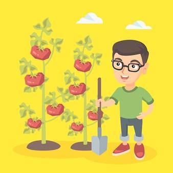 Menino caucasiano pequeno do fazendeiro que cultiva tomates.