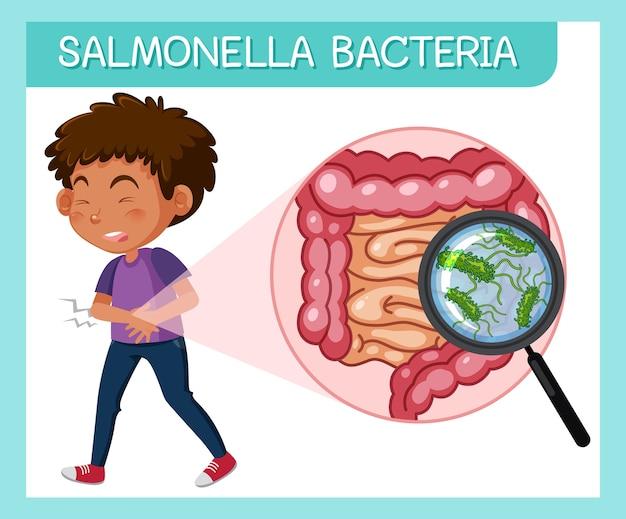 Menino com bactéria salmonella