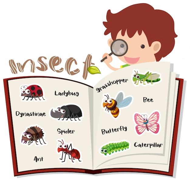 Menino e diferentes insetos no livro