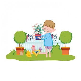 Menino, levantamento, houseplant, com, cerca, e, galo