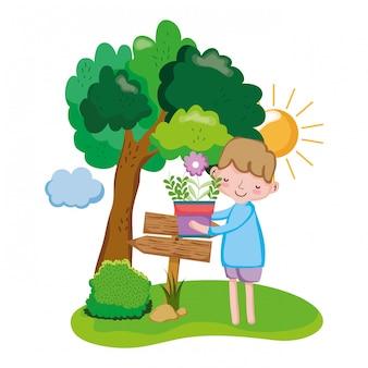 Menino, levantamento, houseplant, com, sinal seta, e, árvore