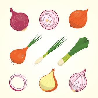 Metade, fatia e cebola inteira madura. conjunto de vegetais de cebolas amarelas, vermelhas e primavera.