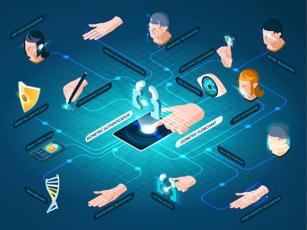 Métodos de autenticação biométrica fluxograma isométrico