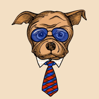 Moda bulldog portrait