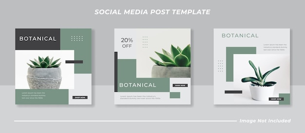 Modelo botânico de postagem em mídia social