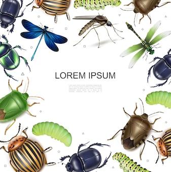 Modelo colorido de insetos realistas com libélulas, batata, colorado, escaravelho, besouros de estrume, lagartas de mosquitos em fundo branco