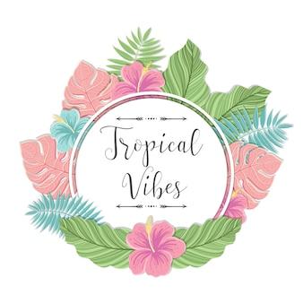 Modelo com folhas de palmeira. rótulo tropical o em fundo branco