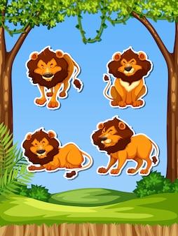 Modelo de adesivo conjunto leão