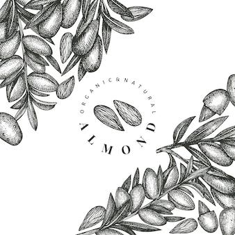 Modelo de amêndoa de esboço desenhado de mão. ilustração de alimentos orgânicos. ilustração retro da porca. fundo botânico de estilo gravado.