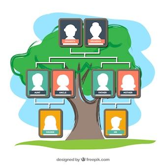 Modelo de árvore de família colorida