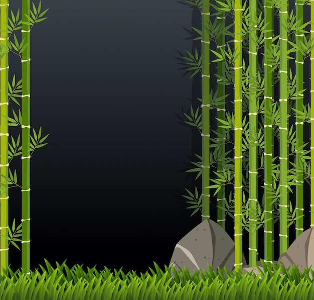 Modelo de bambu verde lindo