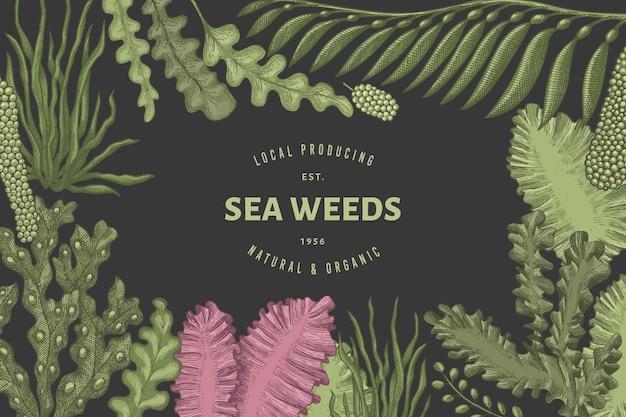 Modelo de banner de algas marinhas
