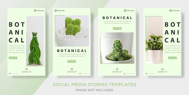 Modelo de banner de botânica para post de histórias sociais de mídia.