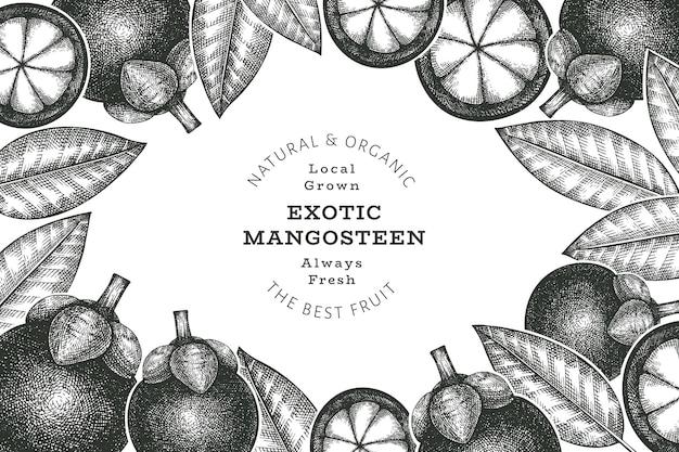 Modelo de banner de mangostão de estilo esboço desenhado à mão