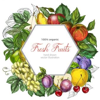 Modelo de banner hexagonal de frutas