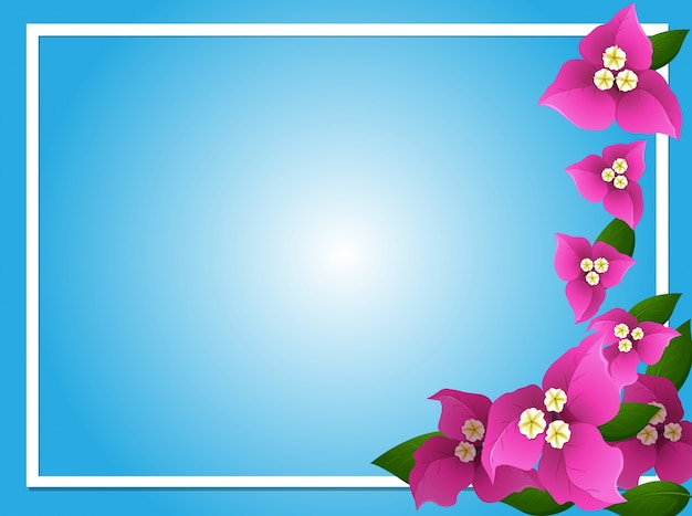 Modelo de borda com bougainvillea cor-de-rosa