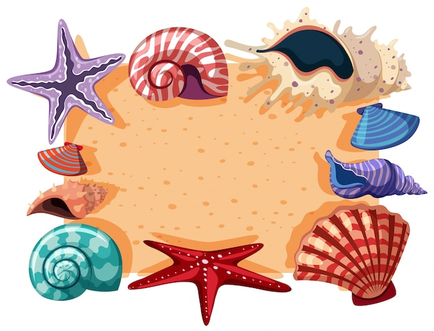 Modelo de borda com conchas e estrelas do mar