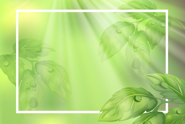 Modelo de borda com folhas verdes