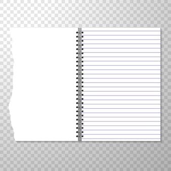 Modelo de caderno aberto com página forrada e em branco.