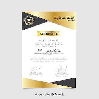 Modelo de certificado profissional plana