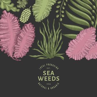 Modelo de design de algas marinhas.