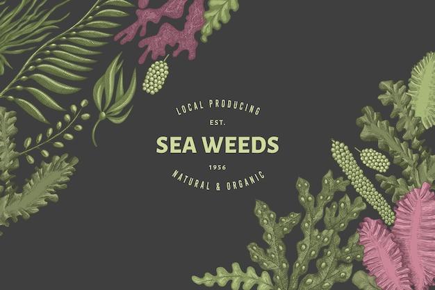 Modelo de design de algas marinhas