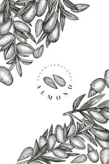 Modelo de design de amêndoa de esboço desenhado de mão. ilustração retro da porca. fundo botânico de estilo gravado.