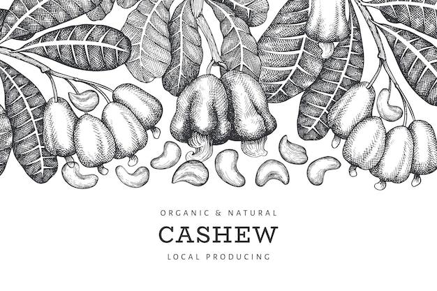 Modelo de design de caju esboço desenhado de mão. ilustração do vetor de alimentos orgânicos em fundo branco. ilustração de porca vintage. fundo botânico de estilo gravado.
