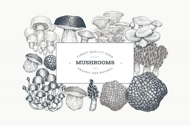 Modelo de design de cogumelos. vetorial mão ilustrações desenhadas.