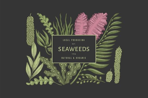 Modelo de design de cor de algas marinhas